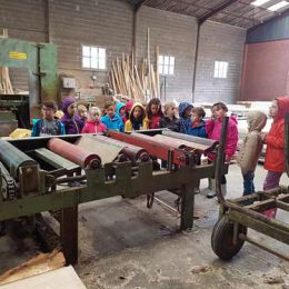 Randonnée et visite à la scierie CE